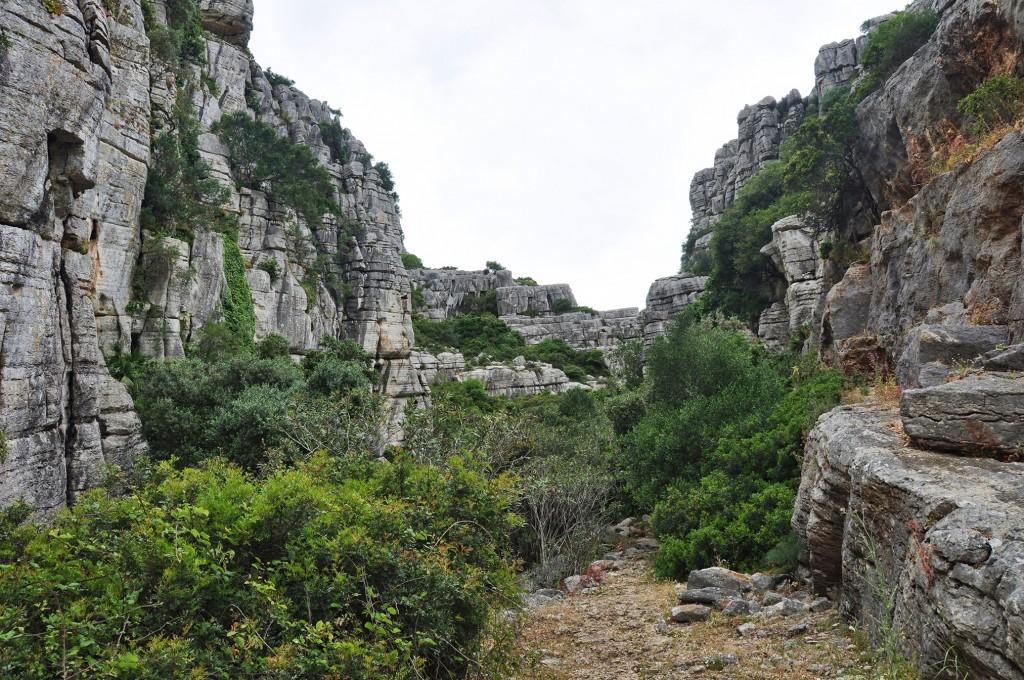 Sierra de la Utrera (Casares)
