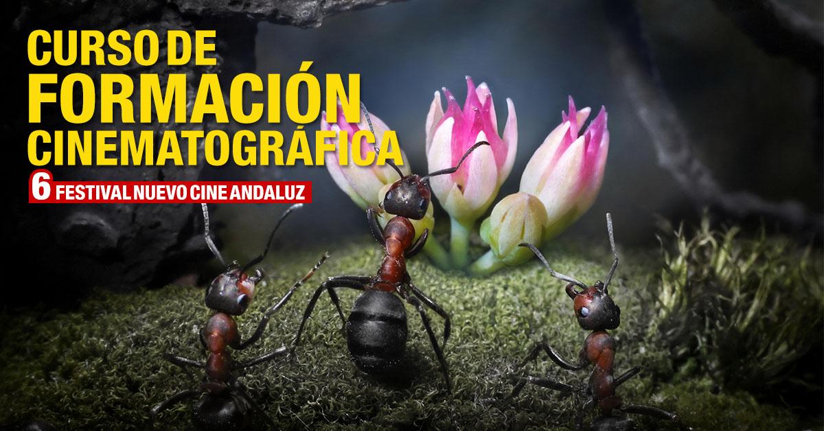 Curso de formación cinematográfica Nuevo Cine Andaluz