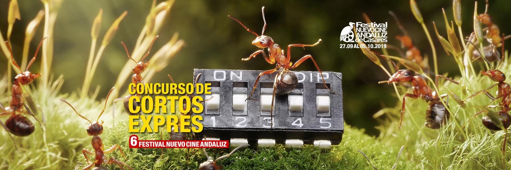 Concurso Cortos Exprés Nuevo Cine Andaluz 2019