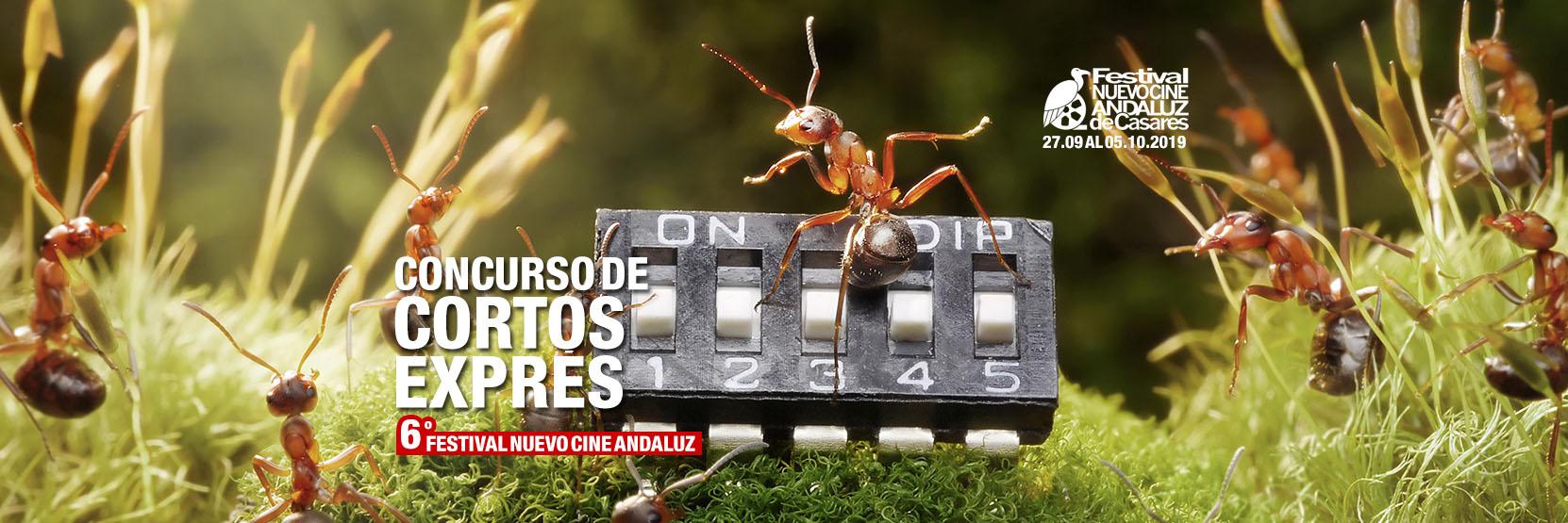 VI Concurso Cortos Exprés Nuevo Cine Andaluz - Casares, 2019