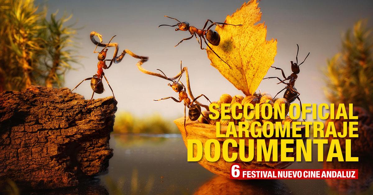 Concurso de Documentales Nuevo Cine Andaluz 2019