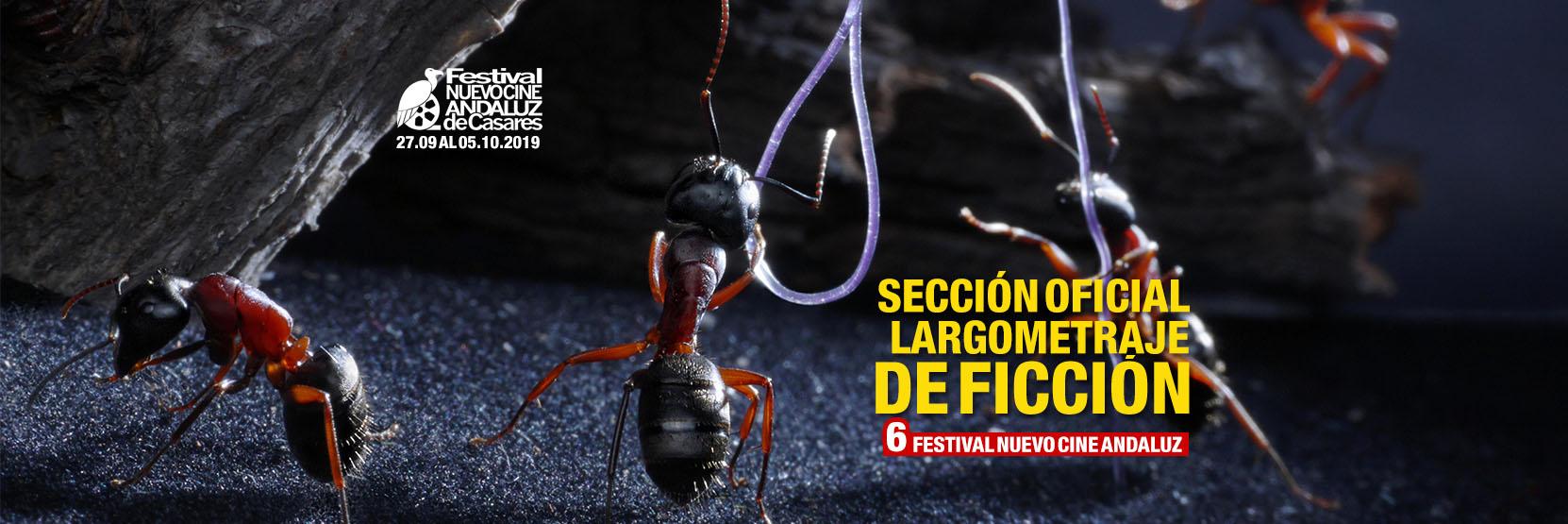 Concurso de Largometrajes Nuevo Cine Andaluz 2019
